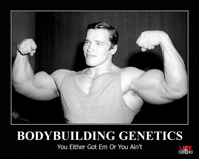 Bodybuilding-Genetics